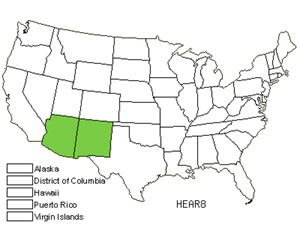 Native States for Arizona Sunflower (Helianthus Arizonensis)