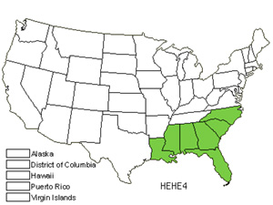 Native States for Variableleaf Sunflower (Helianthus Heterophyllus)