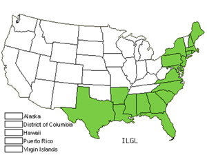 Native States for Inkberry (Ilex Glabra)