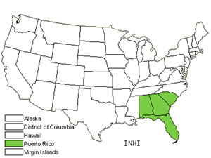 Native States for Roughhairy Indigo (Indigofera Hirsuta)
