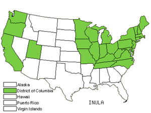 Native States for Yellowhead (Inula)