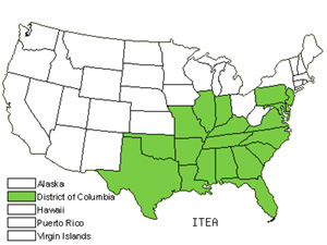 Native States for Sweetspire (Itea)