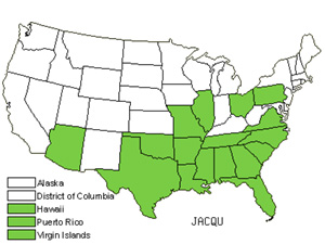 Native States for Clustervine (Jacquemontia)