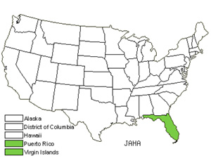 Native States for Havana Clustervine (Jacquemontia Havanensis)