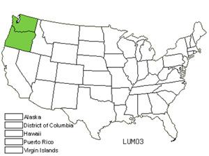 LUMO3.jpg