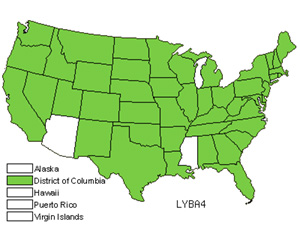 LYBA4.jpg