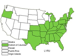 Native States for Taperleaf Water Horehound (Lycopus Rubellus)