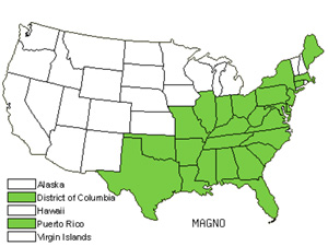 Native States for Magnolia (Magnolia)