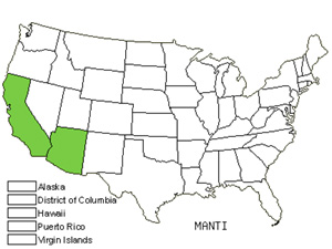 Native States for Mantisalca (Mantisalca)