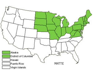 Native States for Ostrich Fern (Matteuccia)