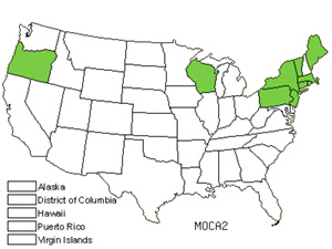 Native States for Purple Moorgrass (Molinia Caerulea)