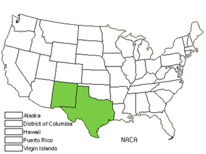 Native States for Sand Fiddleleaf (Nama Carnosum)