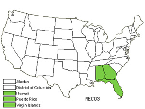 Native States for Narrow Swordfern (Nephrolepis Cordifolia)