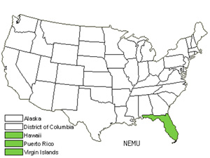 Native States for Asian Swordfern (Nephrolepis Multiflora)