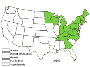 Native States for Mountain Woodsorrel (Oxalis Montana)