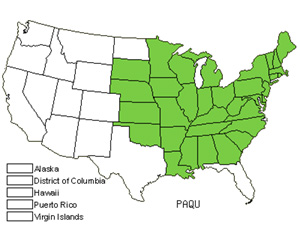 Native States for American Ginseng (Panax Quinquefolius)