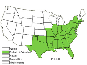 Native States for Paulownia (Paulownia)