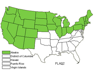 Native States for Northern Green Orchid (Platanthera Aquilonis)