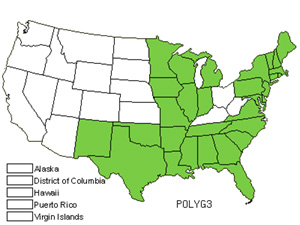 Native States for Jointweed (Polygonella)