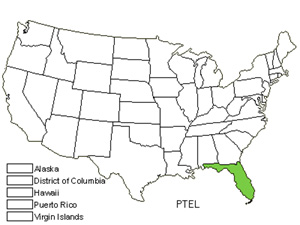 Native States for Alexander Palm (Ptychosperma Elegans)