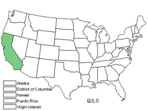 Native States for Valley Oak (Quercus Lobata)