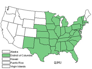 Native States for Chinkapin Oak (Quercus Muehlenbergii)