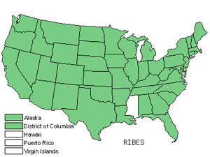 Native States for Currant (Ribes)