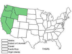 Native States for Slender Goldenbanner (Thermopsis Gracilis)