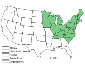 Native States for Arborvitae (Thuja Occidentalis)