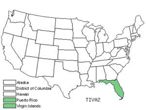 TIVA2.jpg