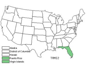 TRMI2.jpg