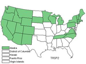 TRSP2.jpg