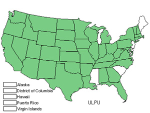 Native States for Siberian Elm (Ulmus Pumila)