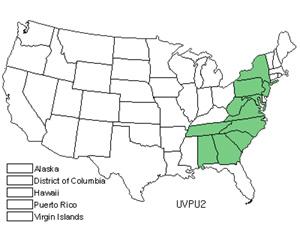 UVPU2.jpg
