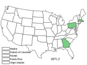 WEFL2.jpg
