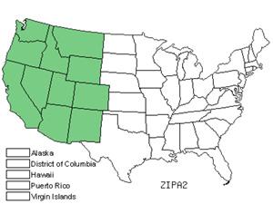 ZIPA2.jpg