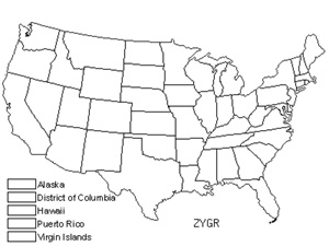 Native States for Zygodon Moss (Zygodon Gracilis)