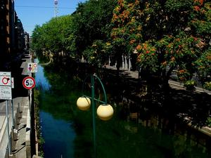 AILAN/4026_-_Milano_-_Naviglio_pavese_-_Foto_Giovanni_Dall'Orto,_7-July-2007_300.jpg