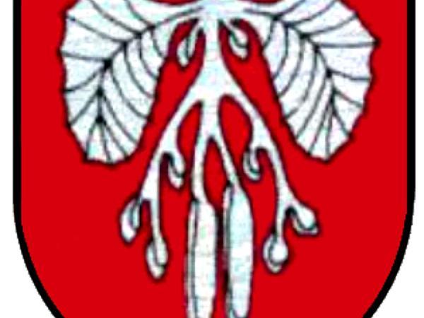 Alder (Alnus) http://www.sagebud.com/alder-alnus