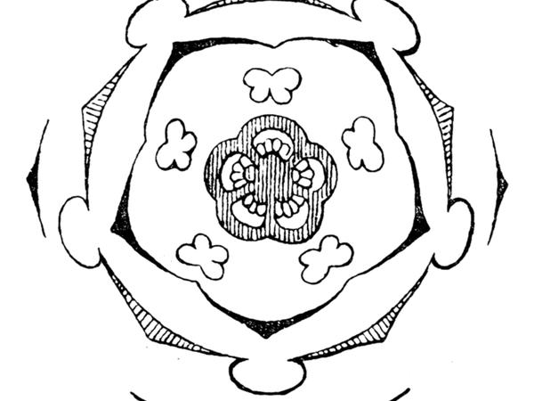 Canterbury Bells (Campanula Medium) http://www.sagebud.com/canterbury-bells-campanula-medium