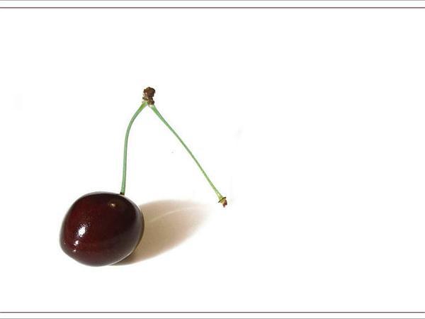 Sweet Cherry (Prunus Avium) http://www.sagebud.com/sweet-cherry-prunus-avium/