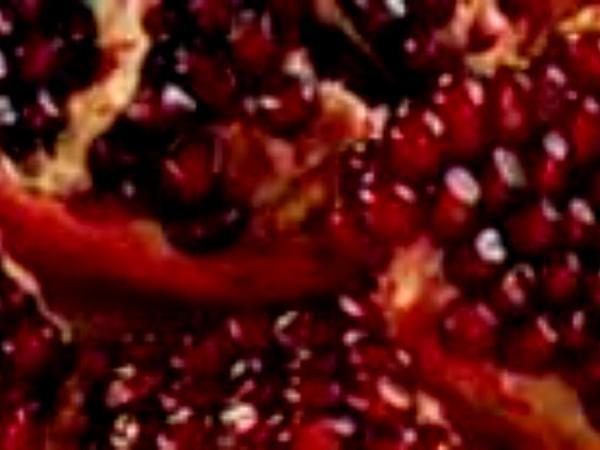 Pomegranate (Punica Granatum) http://www.sagebud.com/pomegranate-punica-granatum/