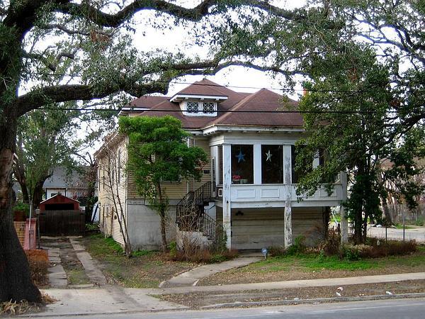 Live Oak (Quercus Virginiana) http://www.sagebud.com/live-oak-quercus-virginiana