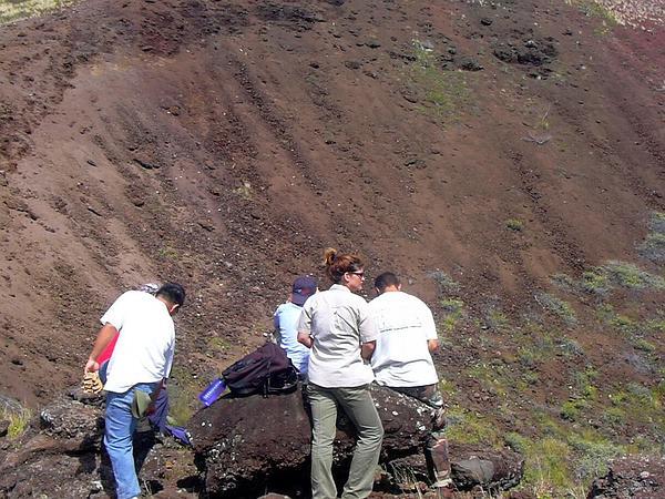 Oahu Riverhemp (Sesbania Tomentosa) http://www.sagebud.com/oahu-riverhemp-sesbania-tomentosa