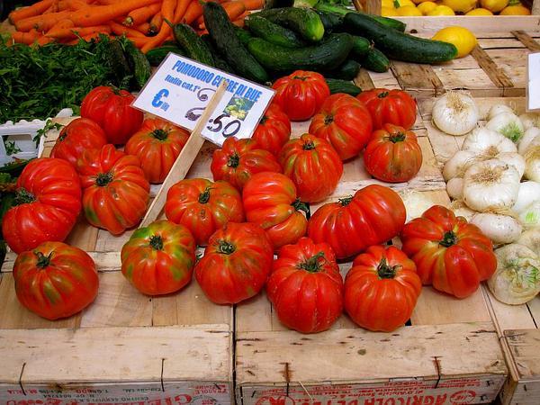 Garden Tomato (Solanum Lycopersicum) http://www.sagebud.com/garden-tomato-solanum-lycopersicum