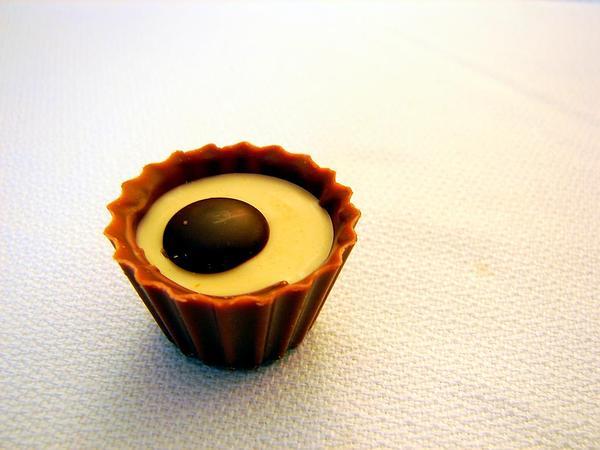 Cacao (Theobroma Cacao) http://www.sagebud.com/cacao-theobroma-cacao/