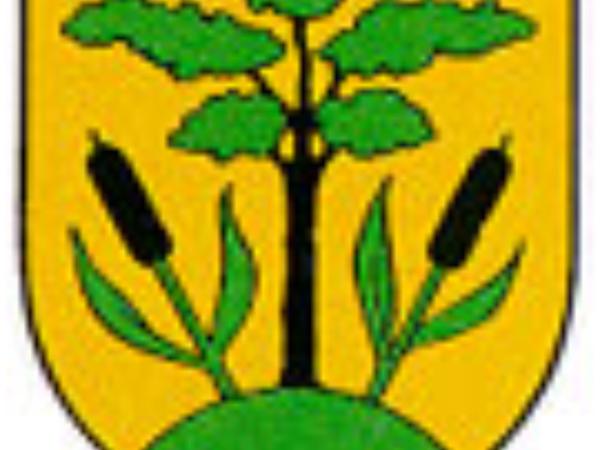 Cattail (Typha) http://www.sagebud.com/cattail-typha/