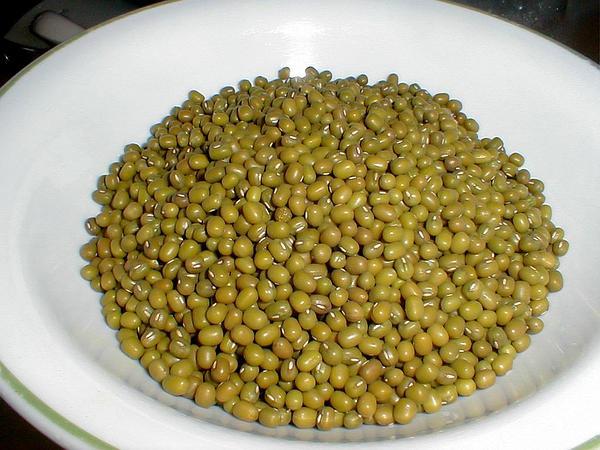 Cowpea (Vigna) http://www.sagebud.com/cowpea-vigna