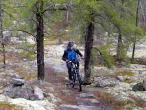 Centre de v lo de montagne saint f licien saguenay  lac saint jean small