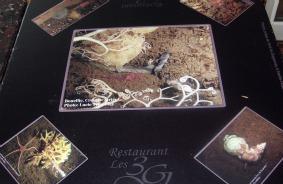 Restaurant les 3 g saguenay  lac saint jean small